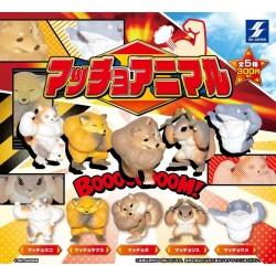 Macho Animals Mini Figure Collection (Set of 5)